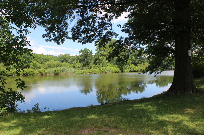 View of the lake at Warinanco Park
